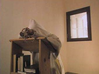 image du film Amour ineffable de Shiri Tsur