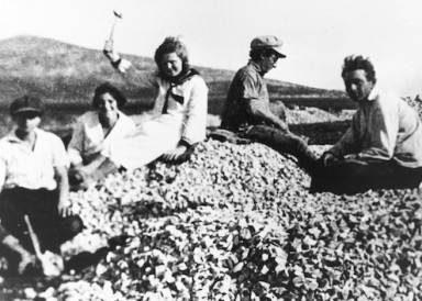 image du film Anou Banou, les filles de l'utopie d'Edna Politi