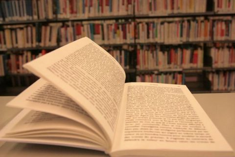 Livre La chute de Camus dans la Bpi