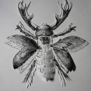 Travail de paper cut ou papier découpé représentant un insecte