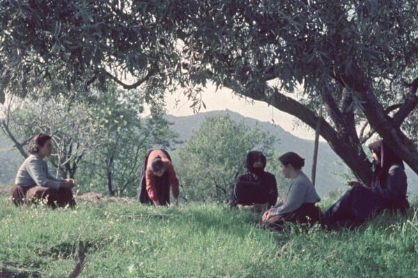 Personnes assises dans l'herbe