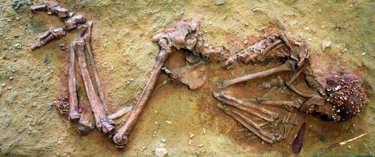 Squelette fossile de la Dame du Cavillon