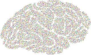 Un cerveau sous forme de réseaux de neurones